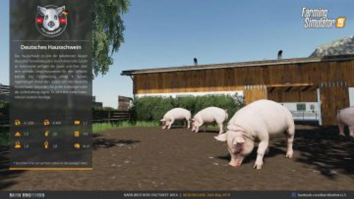 Trending mods today: FS19 Pig Breeding / Schweinezucht Mod v1.0